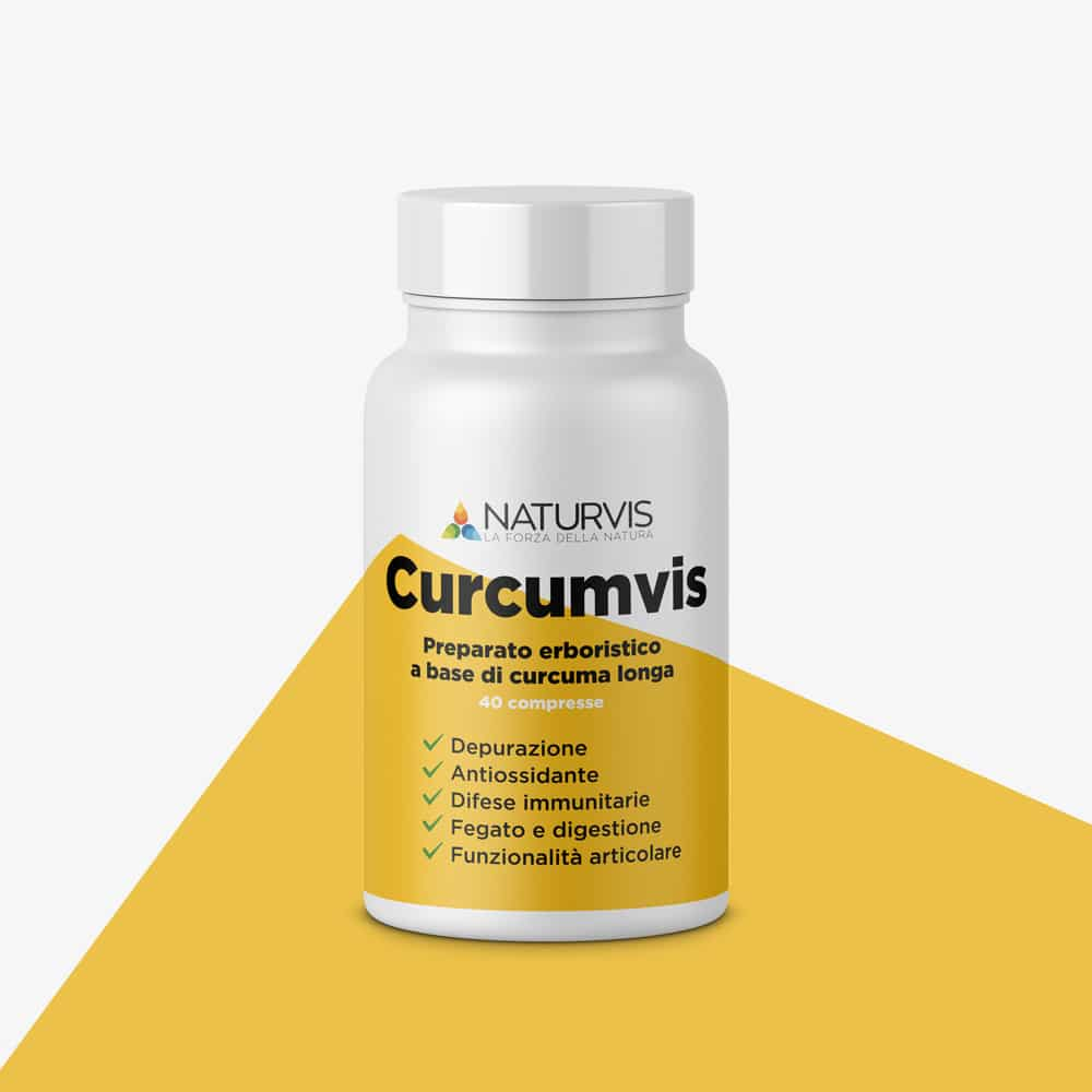 Curcuma longa - Curcumvis